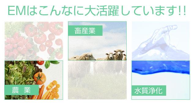 北海道EM普及協会